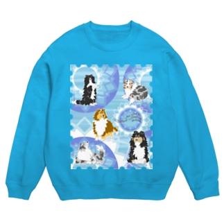 Five colors of Shetland Sheepdogs.~Turquoise~ Sweats