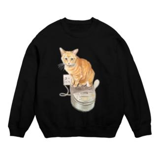 Keep cats warm Sweat