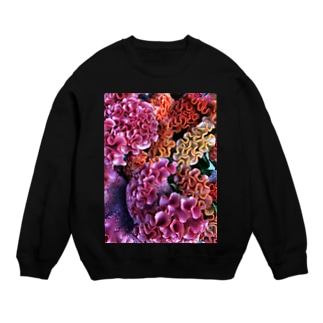 Colorful flower Sweats