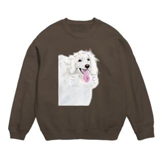 white poodle スウェット
