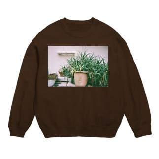 ネグレクトされる観賞用植物 Sweats