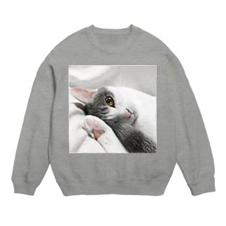 まどろみ猫 Sweats