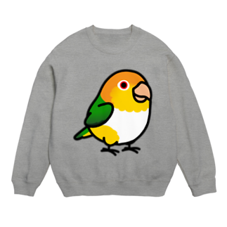 Cody the LovebirdのChubby Bird シロハラインコ Sweats