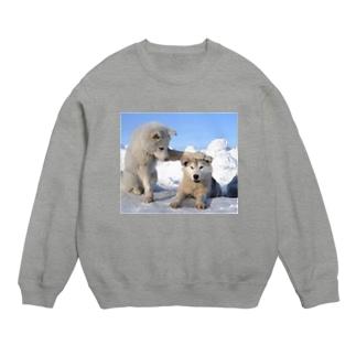 白い犬 dog park Sweats
