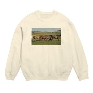 モンゴルのお馬さん Sweats