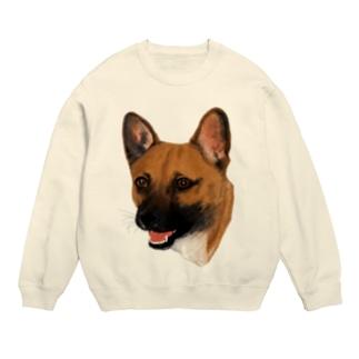 犬のポッチー Sweats