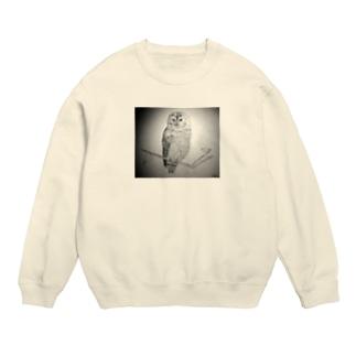 Brown Owl Sweats