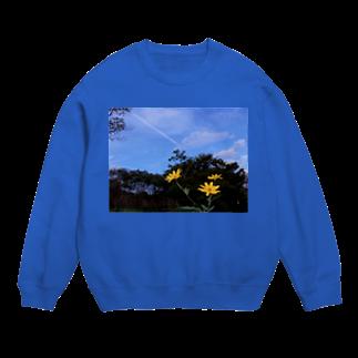hiroki-naraの菊芋と樹木と空 DATA_P_140 tree sky Sweats