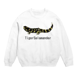 タイガーサラマンダー スウェット