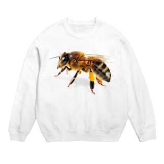 はち!ハチ!蜂! スウェット
