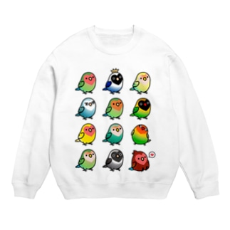 Chubby Bird ラブバード大集合 (コザクラインコ&ボタンインコ)  Sweats