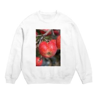 お乙なリンゴ Sweats
