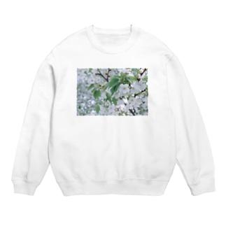白い花 Sweats