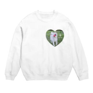 白柴シロのハートTシャツ Sweats
