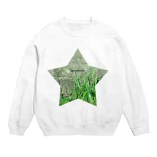 星と草と階段 Sweats