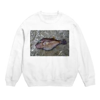 死んだ魚の目_キタマクラ_20180825_0648' Sweats