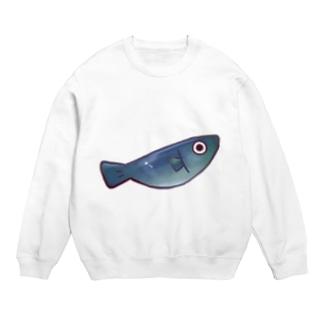 サメ スウェット