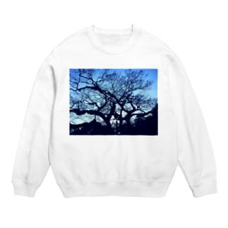blue tree Sweats