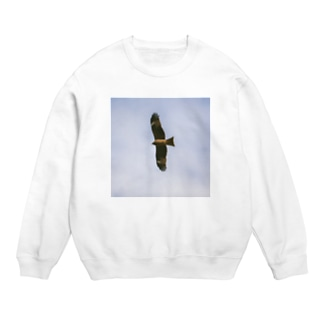 Bird Sweats