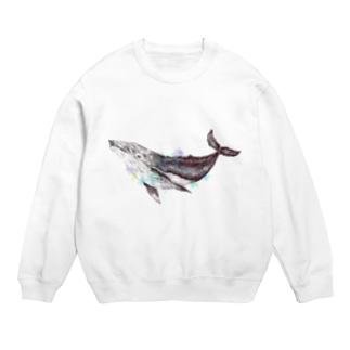 空のクジラ Sweat