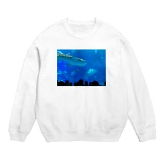 ジンベイザメの写真 Sweats