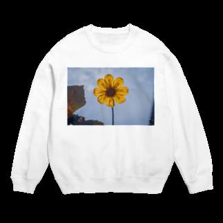 サンショク.の黄色い花 Sweats