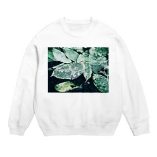 leaf Sweats