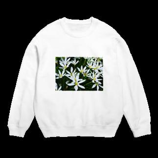 cozcozの花 Sweats