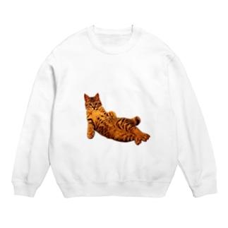 Elegant Cat Sweats