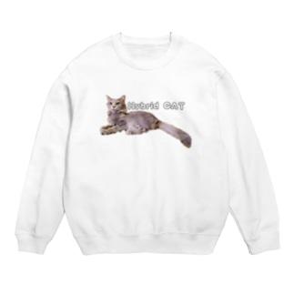 雑種Hybrid CAT Sweats