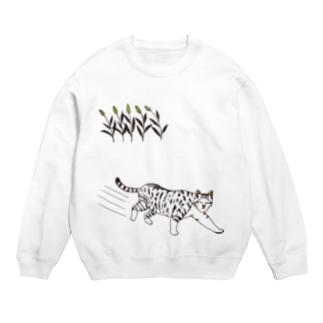 ノラ猫 Sweats
