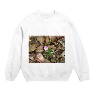 山道に咲く花 Sweats