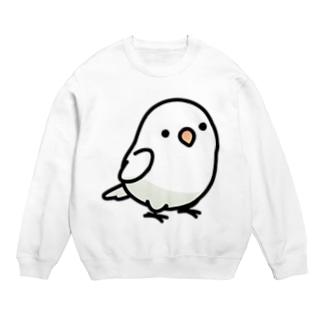 Chubby Bird ボタンインコ Sweats