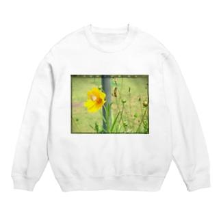 花と蝶々 Sweats
