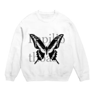 Papilio thoas Sweats