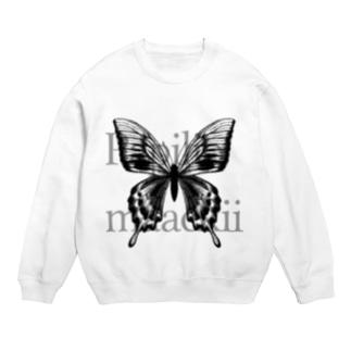 Papilio maackii Sweats
