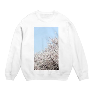 桜 Sweat