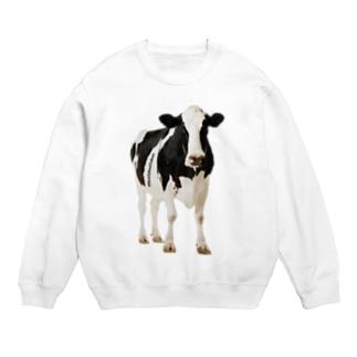 STYC MILK COW Sweats