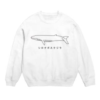 シロナガスクジラ Sweats