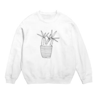 謎植物の鉢植え スウェット