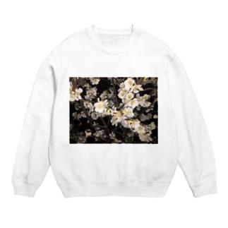 冬の花 Sweats