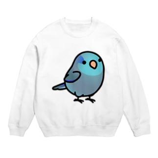 Chubby Bird マメルリハ Sweats