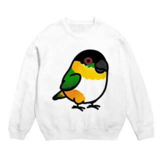 Chubby Bird ズグロシロハラインコ Sweats