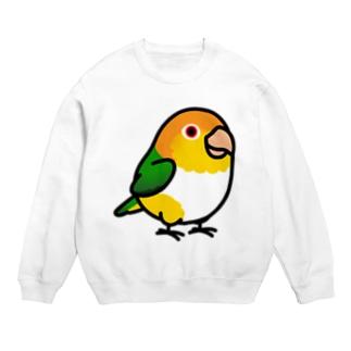 Chubby Bird シロハラインコ Sweats
