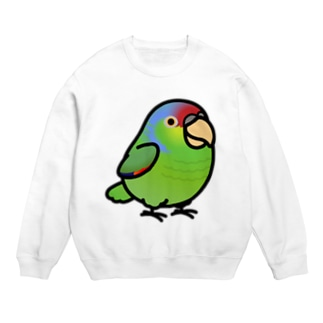Chubby Bird  フジイロボウシインコ Sweats
