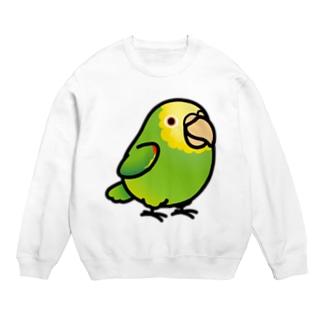Chubby Bird ボウシインコ スウェット