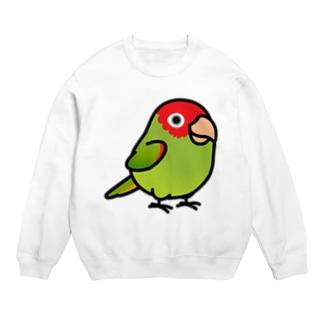 Chubby Bird オナガアカボウシインコ Sweats