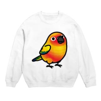 Chubby Bird コガネメキシコインコ Sweats