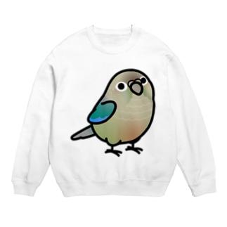 Cody the LovebirdのChubby Bird ウロコインコ Sweats