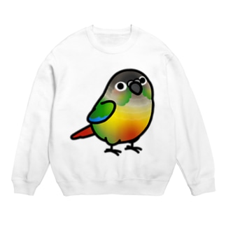 Cody the LovebirdのChubby Bird ウロコインコ Sweats